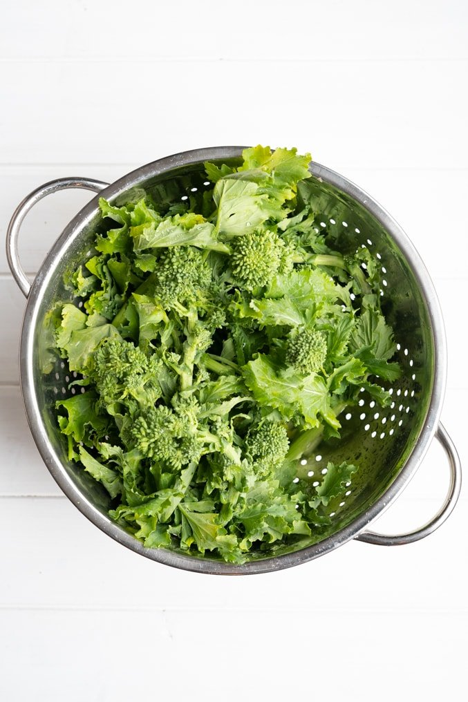 Collader filled with rapini