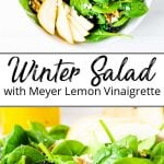 A pinterest pin showing a bowl of a winter salad recipe with pears, blackberries and meyer lemon vinaigrette